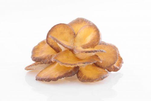Maitake (Grifola frondosa, trsnatec lupenitý