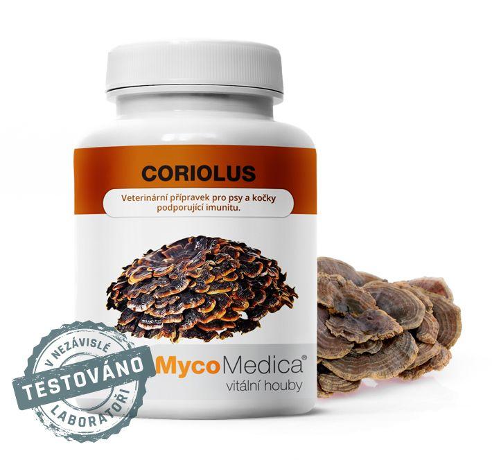 Coriolus- outkovka pestrá MycoMedica